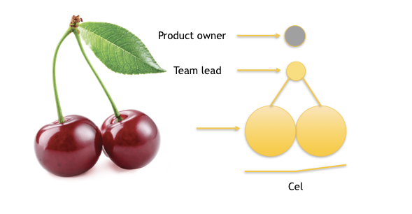 Picture of a cherry and a cell